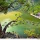 Trang-an-Bái-đính-one-day