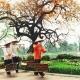 Hanoi-city-tour