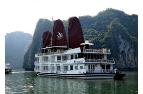 Halong bay 2 days 1 night on Pelican Cruise - Luxury 5 star boat
